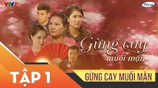 Xin Chào Hạnh Phúc - Gừng cay muối mặn tập 1 | Phim tình cảm sóng gió gia đình Việt
