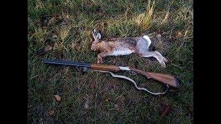 Охота на зайца в Краснодарском крае в ноябре 2018