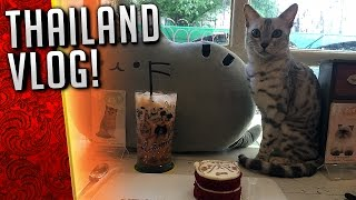 MOBBED BY CATS! [Thailand Vlog]