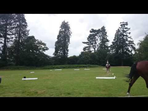 Tj's beautiful 25.5 dressage test. Eridge horse trials 2014BE106