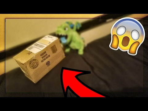 UNBOXING BABY DRAGON From SUPERCELL