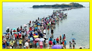 UNBELIEVABLE ! WHAT IS HAPPENING IN THE SEA ! STRANGE END TIMES SIGNS & BIBLE PROPHECY 2018