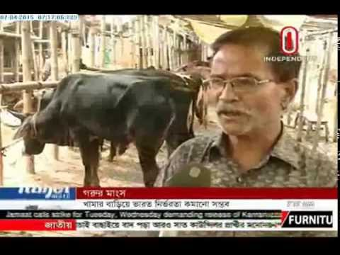 Beef price high: India bans Cattle export (07-04-2015)