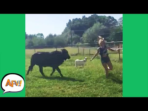 FAILING Through the FIELDS! 😂 | Funnies and Fails | AFV 2020