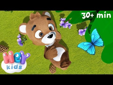 Little Teddy Brown Bear - HeyKids - Bear song for kids
