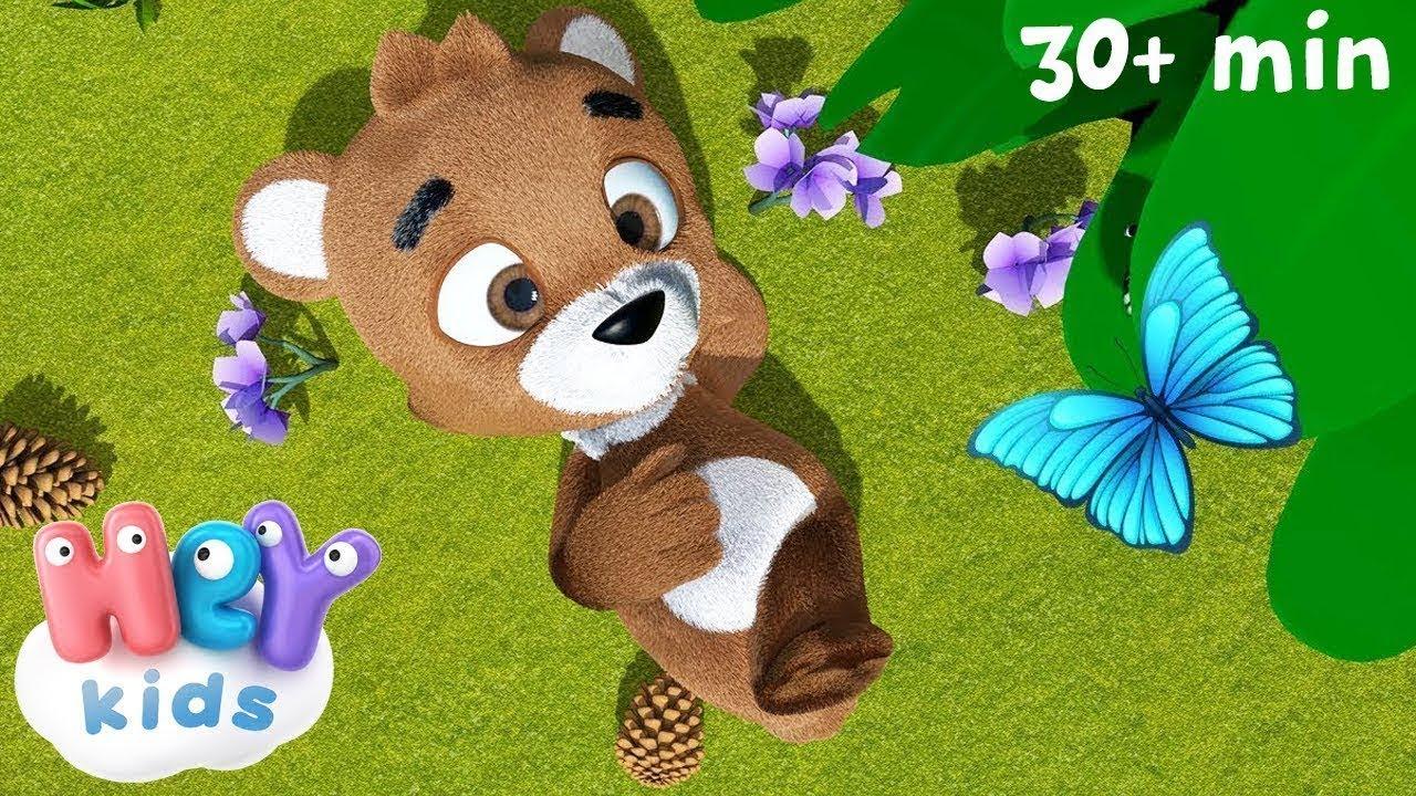 Little Teddy Brown Bear - HeyKids - Bear song for kids ...
