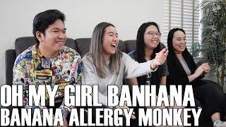 Oh My Girl Banhana- Banana Allergy Monkey (Reaction Video) - Stafaband