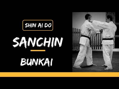 Sanchin Kata  Bunkai