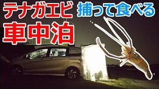 【超簡単】ペットボトルと小さい網でテナガエビを捕って食べる真夏の車中泊
