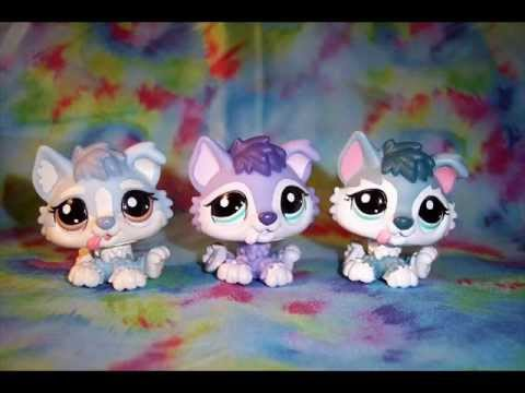 All Lps Huskies I Want For My B Day And Christmas Youtube