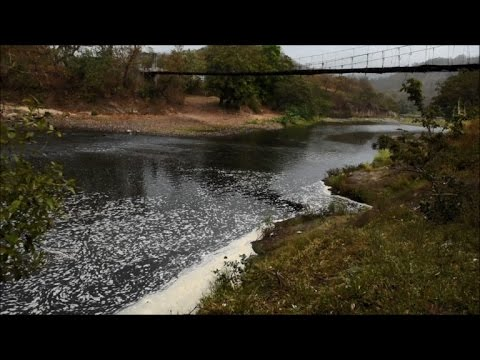 Chemical waste in Lempa river killing tourism and animal life