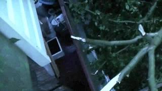 Дерево упало на балкон(, 2011-08-11T10:36:56.000Z)