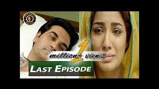 Dil Lagi Last Episode - ARY Digital - Top Pakistani Dramas