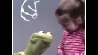 Q R Cookie Monster Vine- Kermit Suicide Vine