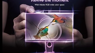 BenQ SW2700PT Monitor for Photographers