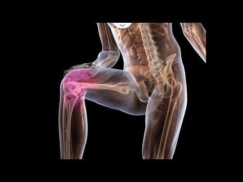 Что делать если начали болеть колени