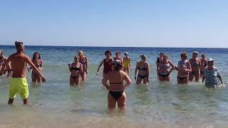 Отель SUNRISE DIAMOND BEACH RESORT Египет Шарм эль Шейх 30 01 2020