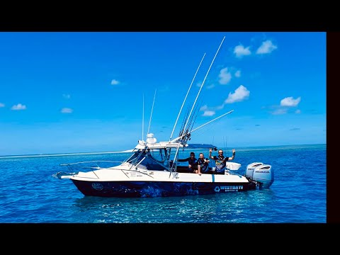 The Craziest Fishing Trip Out Of Port Douglas On The Great Barrier Reef 2019 Part 3
