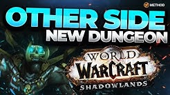 NEW SHADOWLANDS DUNGEON: DE OTHER SIDE | Blood DK POV