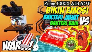 Download lagu WAR..!!! BAKTERI BAIK vs KUMAN JAHAT AIR GOT | Microscope Zoom 1000X