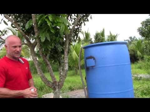 apple-cider-vinegar-in-chicken-water