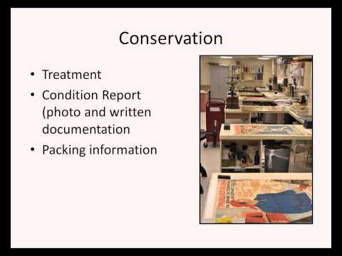 Conservation and Preservation Issues