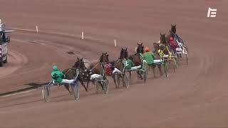 Vidéo de la course PMU PRIX DE PORTO