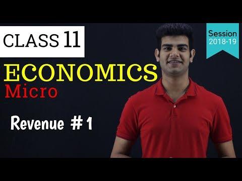 revenue class 11