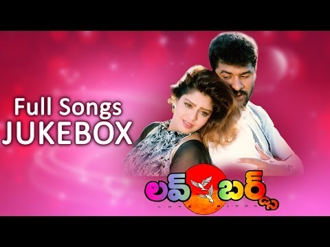 AR Rahman's Love Birds (లవ్ బర్డ్స్) Movie || Full Songs Jukebox || Prabhu Deva, Nagma