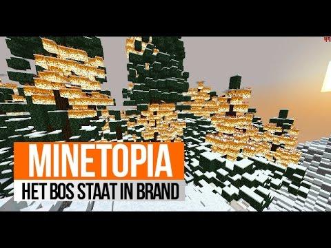 Minetopia #64 HET BOS STAAT IN BRAND !!