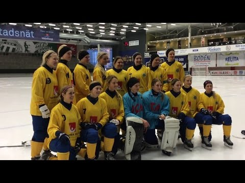 Furfobia Watch Out Official song for Sweden in 2016 Bandy World Championship