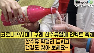 [한국농수산TV] 코로나19시대! 구례 산수유열매 언텍…