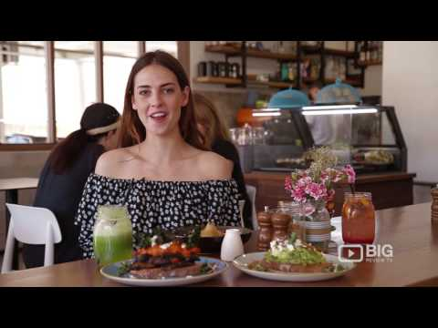Petrichor & Co Cafe Brisbane serving Healthy Meal and Coffee