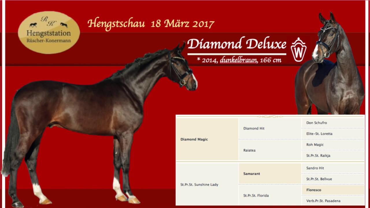 diamond deluxe hengst