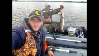 Рыбалка на троллинг и джиг в день Выборов! Омская область. 1 июля 2020 года.