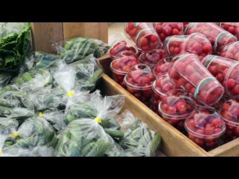 St. Albert Farmers Market 2017