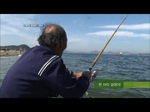떠나는 윤택을 위해 아침부터 바다물고기를 잡아온 자연인 [자연인  다시보기]