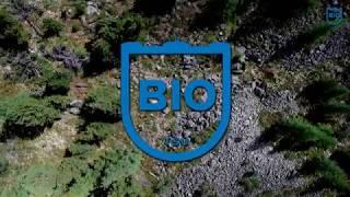 International Master's Degree in Biodiversity | TSU (promo video #1)