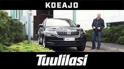 Koeajo: Skoda Kodiaq 2.0 TDI 190 4x4 Exclusive DSG - Tuulilasi