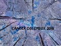 Cancer December 2018 ~ They Want to Build w You, Trust It
