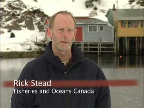 Fisheries Stewardship in Action PART 1 of 2