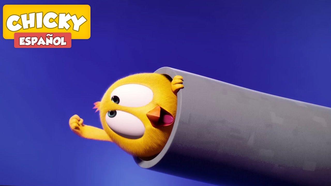 ¿Dónde está Chicky? 2021   CHICKY ¡ BOOM !   Dibujos Animados Para Niños