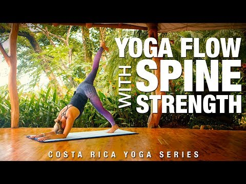 Yoga Flow with Spine Strength Yoga Class - Five Parks Yoga