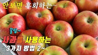 간단하고 맛있는 제철 사과 요리 3가지 꿀팁 강쉪^^ …