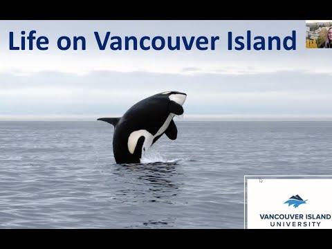 Life on Vancouver Island