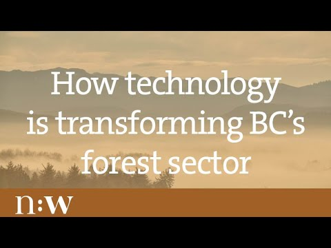 How Technology Is Transforming B.C.'s Forest Sector