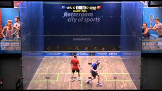 Squash : World Open 2011 Semi-Final Roundup
