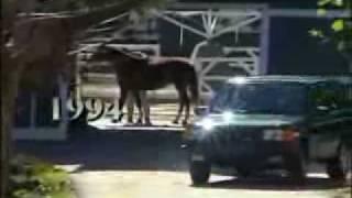 Range Rover history promotional video thumbnail