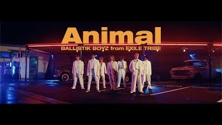 BALLISTIK BOYZ from EXILE TRIBE / 「Animal」Music Video