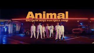 Download BALLISTIK BOYZ from EXILE TRIBE / 「Animal」Music Video